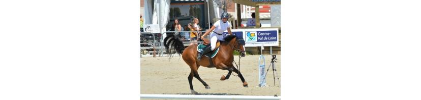Bonnets pour chevaux